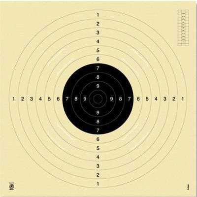 Lot de 100 cibles précisions Toptir 14x14 cm
